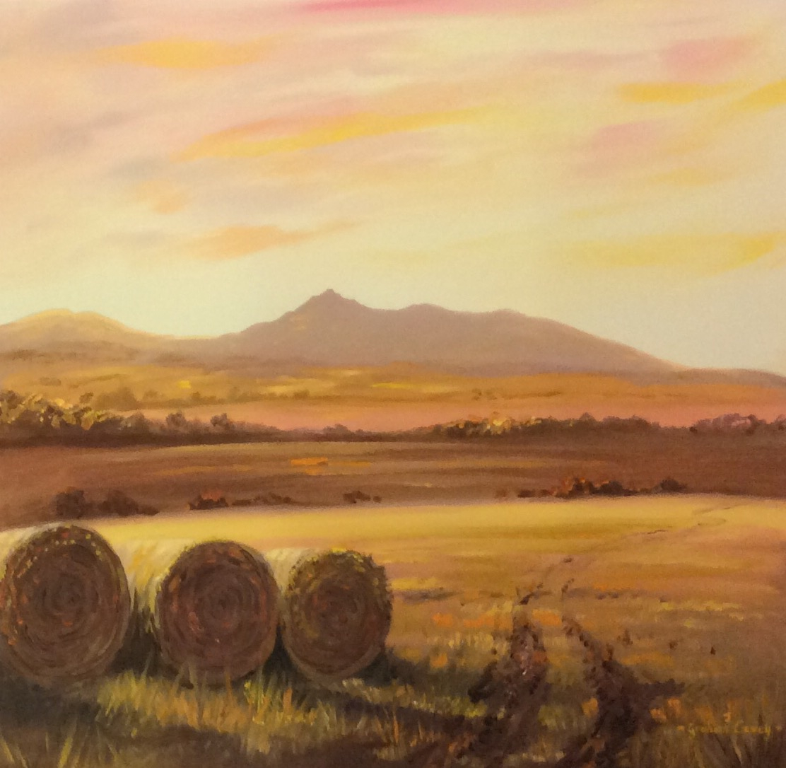 Bales of Bennachie