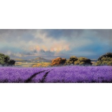 Lilac Dreams at Bennachie by Allan Morgan