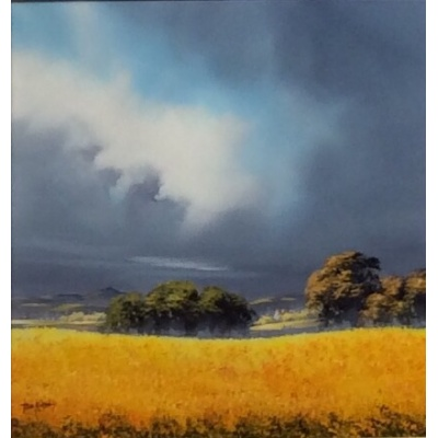 Over The Fields To Bennachie by Allan Morgan